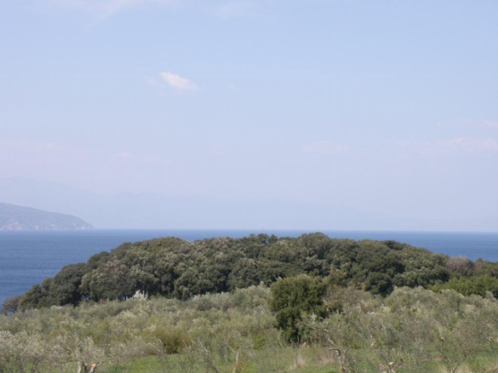 Područje Šotoventa